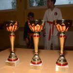 kg_DSC_2006_cup_700